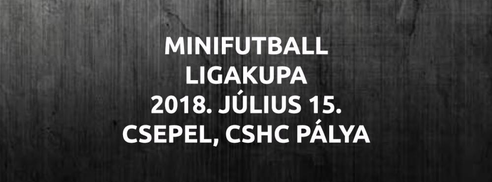 MINIFUTBALL LIGAKUPA 2018