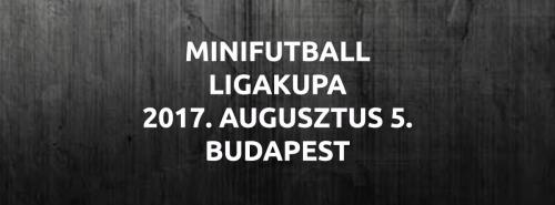 MINIFUTBALL LIGAKUPA 2017
